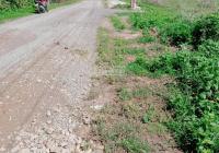 Bán gấp 120m2 đất Tân Hòa, Phú Mỹ mặt tiền đường nhựa 6m cách QL 51 500m giá đầu tư
