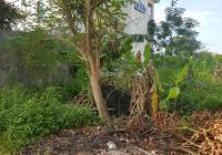 Bán đất phân lô xây biệt thự khu Anh Dũng 7 - Dương Kinh, giá 17.5 tr/m2