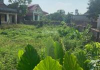 Bán gấp 130m2 đất lô góc thôn Vạn Tải - Hồng Phong - Nam Sách chỉ 950 triệu