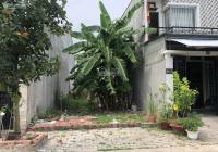 Bán đất xã Mỹ Hạnh Nam, Đức Hòa khu Trần Anh, sổ hồng riêng, diện tích 80m2 giá 1 tỷ LH: 0931994955