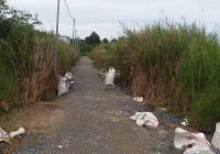 Đất ở 80m2 đường Tam Đa gần khu du lịch BCR, đầy đủ tiện ích, xây dựng tự do