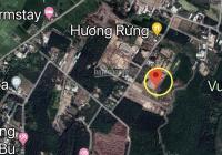 Bán đất giá rẻ gần ngay khu du lịch Chi - Bu và Bò Cạp Vàng, Vĩnh Thanh, Nhơn Trạch, 1.8tr/m2