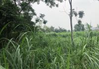 Bán 1850m2 đất trang trại nhà vườn xã Tản Lĩnh, Ba Vì, Hà Nội, giá 1,2tr/m2