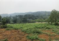 Bán 3000m2 đất trang trại nhà vườn tại cổng vườn quốc gia Ba Vì, xã Tản Lĩnh