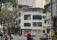 Bán lô nhà đất biệt phủ 360m2 giá bán: 180 tỷ tại Phường Nguyễn Trung Trực, Quận Ba Đình, Hà Nội