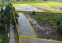 Bán gấp 20 lô đất nằm mặt tiền đường Bưng Tràm lộ giới 12m hiện hữu đường nhựa 6m