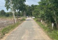 Chính chủ cần bán gấp 20 lô đất Vị trí thuộc ấp 2 xã Tân Thạnh Tây huyện Củ Chi HCM