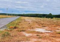 Cần tiền bán gấp 2 mẫu đất (200x100m), đối diện KCN, sổ hồng, thổ cư, giá 370tr/sổ, đường thông 16m