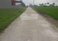 Bán đất đấu giá 5.5tr/m2 xã Thái Dương - Bình Giang - Hải Dương. LH: 0969974055