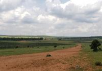 6396m2 đất xã Phan Thanh, Bình Thuận chỉ 671 triệu, SHR Gần khu dân cư, đường trên sổ đẹp