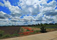 4 lô thổ mặt tiền đường lớn Trần Văn Nghĩa, Cần Giuộc, Long An, SHR, 240m2 (5x48) giá 1,750 tỷ
