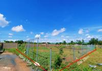 500m2 đất làm nhà vườn ngay thị trấn Cần Giuộc, SHR, giá chỉ 3,2tr/m2