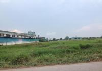 Bán 5,9 hecta đất gần Đặng Thúc Vịnh
