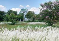 Hàng đầu tư sát Sông Tắc đối diện trường học Trường Thạnh, Q9, TP. Thủ Đức