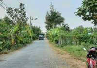Bán lô đất mặt tiền đường Lương Ngang, 1000m2, 9,5 tỷ, Xã Tân Nhựt, Huyện Bình Chánh, Hồ Chí Minh