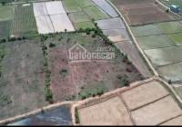 Chỉ 70 triệu có cơ hội sở hữu ngay 1000m2 đất gần cao tốc Bắc Nam, LH 0788969474