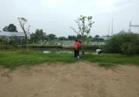 Bán đất TT Cần Giuộc, đường xe hơi 4,5m, SHR, cây trồng xung quanh, cá nuôi đầy ao, cách QL50 600m