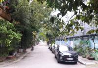 Cho thuê liền kề KĐT Đại Kim - Hoàng Mai 57m2 x 4T, nhà đẹp, MT 5m, gara, 16tr, có TL
