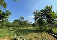 Cần sang nhượng 4.700m2 đất thổ cư view núi non tại Cư Yên, Hòa Bình. LH: 0978186666