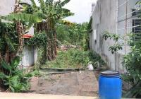 Đất Phú Mỹ nhánh DX 005, giá 1 tỷ 790