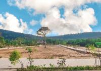 Tôi cần bán gấp 4 lô mặt đường Nguyễn Trung Trực, 125m2, kinh doanh sinh lời - 0961940768