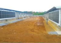 100ha trang trại tại Đắk Lắk đầy đủ giấy tờ