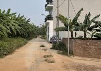 Đấu giá Kim Sơn - sát đường chân đê đang mở rộng 13m - hiện có 3 lô bán - 0844444404