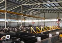 Cho thuê xưởng 5500m2 tại Hố Nai 3, Trảng Bom, Đồng Nai