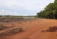 Đất KCN Hoa Lư Lộc Ninh Bình Phước giá F0 cho nhà đầu tư