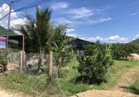 Đất Diên Tân, thích hợp làm nhà vườn, giá bán 650 triệu