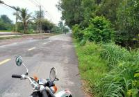 Bán 10 hecta đất đường Nguyễn Văn Khạ, Xã Phú Hòa Đông, Huyện Củ Chi