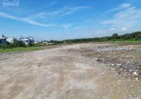 Cần chuyển nhượng Đất tại Xã Lý Nhơn, Cần Giờ. DT từ 1200m2 - 5000m2 - 20.000m2 giá 3,3tr/m2