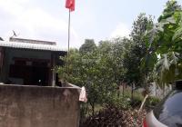 Bán đất tặng nhà cấp 4, xã Tân Hưng, Bàu Bàng shr, dt 643m2 giá 3,55 tỷ liên hệ chính chủ