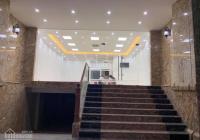 Mặt phố Phan Kế Bính 74m2 x 7 tầng, dòng tiền, thang máy, vỉa hè rộng, giá 37 tỷ