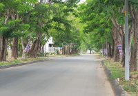 Chính chủ bán nền biệt thự 8x20m khu dân cư Khang An giá 49.5 tr/m2 (tốt nhất thị trường)