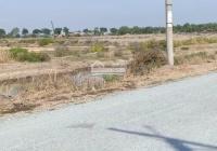 Bán đất mặt tiền đường đê muối Tiền Giang Lý Nhơn Cần Giờ, DT: 10.000m2, giá: 13 tỷ TL