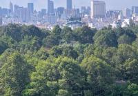 Cần bán căn hộ cao cấp Galaxy 9, Quận 4, 90m2, 3Pn, tặng NT, giá bán: 4.35 tỷ, LH: 0903 833 234