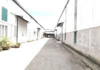 Cho thuê gấp kho xưởng 1000m2 - 2000m2 và 3000m2 tại Quán Gỏi, Bình Giang. Kho mặt đường QL5