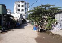 BÁN GẤP miếng đất 5x18,65 trong KDC Huỳnh Bá Chánh, xã Tân Kiên, Bình Chánh,Sổ hồng riêng, giá 3 tỷ