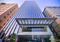 BQL cho thuê văn phòng tòa Elcom Building Duy Tân Cầu Giấy DT từ 75-450m2 giá 205.162đ/m2/tháng