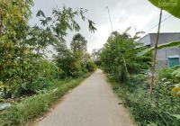 Bán 592m2 (10.21x60, thổ 100m2) đan 3m, xã Tân Hội Trung, H. Cao Lãnh, Đồng Tháp