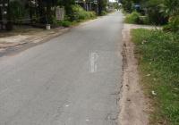 Cần bán gấp 2100m2 đất khu dân cư đường nhựa số 3, Tân Thông Hội, Củ Chi