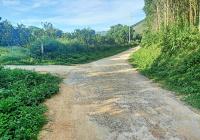 Bán nhanh lô đất nhà vườn tại xã Bảo Hiệu, huyện Yên Thủy, Hòa Bình