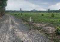 Bán đất đường Đồng Tiến, Ấp 6, xã Xuân Tâm, huyện Xuân Lộc, Tỉnh Đồng Nai