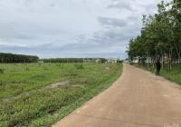 Bán gấp 2 sào đất ngay đường tỉnh 42m, DT: 2.250m2 giá 480tr, liền kề KCN, sổ hồng sẵn