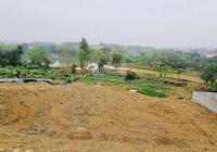 Chuyển nhượng 3600m2 đất thổ cư tại thôn Cố Thổ, Hòa Sơn, Lương Sơn, Hòa Bình