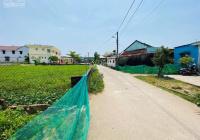 Cần bán gấp đất Hoà Vang giá rẻ cách chợ đêm Tuý Loan 800m. Lh: 0905309259