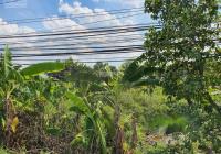 MT TL 824 kế KCN Thịnh Phát, DT 22,3x100 có 300m2 thổ cư còn lại vườn giá 16 tỷ