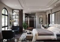 Đẹp - đỉnh - đẳng cấp - lô góc 3 thoáng - tặng nội thất - Vạn Bảo - Ba Đình - 60m2 - 5T - MT 12m