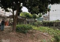 Bán đất Vĩnh Quỳnh, Thanh Trì DT 254m2, mặt tiền 12m, giá 6.6 tỷ. Lô góc 2 thoáng, đầu tư chia lô